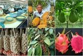 Vietnam, 2e pays Sud-Est asiatiques ayant le plus de produits agricoles protégés