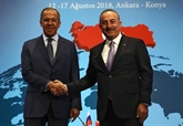 La Turquie et la Russie promettent de renforcer le partenariat stratégique