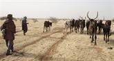 Les chefs des agences alimentaires de l'ONU en visite au Niger