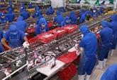 Les exportations nationales de pangasius vers lUE repartent à la hausse