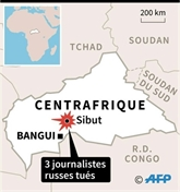 Journalistes assassinés : RSF réclame une enquête