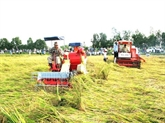 Tây Ninh exhortée à devenir un Centre des produits agricoles de haute qualité