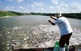 Lancement d'un projet de développement durable dans le delta du Mékong