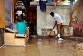 Inondations en Inde: alerte aux serpents avec la baisse des eaux