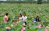 Des paysans de la commune d'An Phu changent leur vie grâce au tourisme