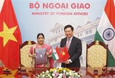 Réunion du Comité mixte Vietnam - Inde