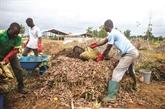Au Bénin, les ordures sont devenues de l'or