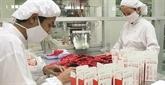 Vietnam - Inde: rencontre dentreprises dans le domaine de la santé