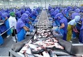 Le Vietnam invite l'UE à retirer le carton jaune à ses produits marins