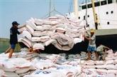 L'Égypte importera un million de tonnes de riz vietnamien