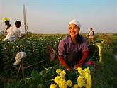 Les femmes au travail: les couleurs de la vie