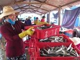 Produits aquatiques: 4,63 milliards de dollars d'exportation en sept mois