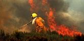 La canicule en Europe: incendies, pollution et horloge cassée