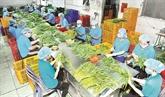 Opportunités dexportations pour les produits agricoles du Vietnam