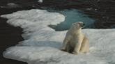 Climat: un réchauffement de 2°C aura des conséquences néfastes