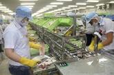 Nombre d'entreprises vietnamiennes en forte croissance sur le marché russe