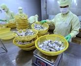 Les États-Unis diminuent les taxes antidumping sur les crevettes vietnamiennes