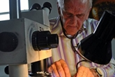 Graham Short, maître de la gravure miniature sur tête d'épingle