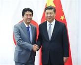Xi et Abe évoquent l'amélioration des liens sino-japonais