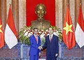 Le Vietnam et l'Indonésie publient une déclaration commune