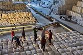 Élever la position du riz vietnamien à l'international: priorité à la qualité