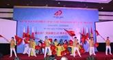 Célébration des 45 ans des relations diplomatiques Vietnam - Japon