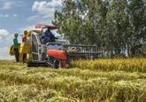Opportunités de coopération Vietnam - Cuba dans l'agriculture