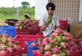 Promotion du partenariat Vietnam - Japon pour la paix et la prospérité en Asie
