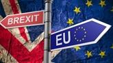 Les citoyens européens traités comme les autres immigrés après le Brexit