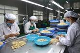 Opportunités d'exportation du Vietnam aux EAU et au Koweït
