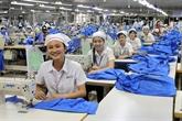 Exportation: trois groupes de produits dépassent les 20 mds de dollars