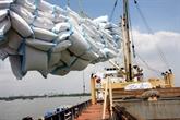 L'Égypte importera un million de tonnes de riz blanc vietnamien
