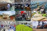 Le Vietnam cherche à participer davantage au marché de l'ASEAN