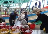 Pêche illicite: la marche forcée des réformes