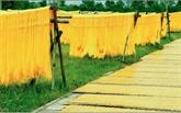 L'effervescence du village de vermicelles à l'approche du Têt