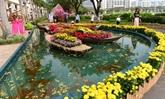 Les marchés aux fleurs du Têt 2019 à Hô Chi Minh-Ville