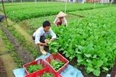 Vers une agriculture durable au Vietnam