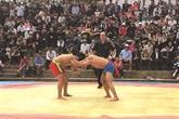 La lutte libre, une particularité du Têt à Hanoï