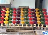 Visite d'un village de bâtonnets d'encens à Huê