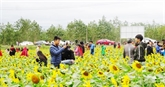Nouvel An: Quang Binh accueille 40.000 touristes pendant les jours fériés