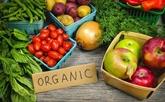 Perspectives des exportations de produits agricoles bio