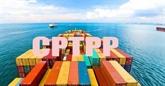 L'Accord CPTPP profite énormément aux entreprises vietnamiennes