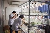 Biologie-biotechnologie: promotion de la coopération entreprises - universités