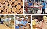 Promouvoir le commerce de bois légal
