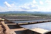 Phu Yên: mise en chantier de deux centrales solaires