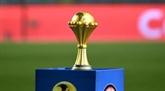 L'Égypte préférée à l'Afrique du Sud pour accueillir la CAN-2019