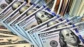 Hô Chi Minh-Ville : 3,8 milliards de dollars de devises transférées en neuf mois