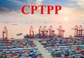 Le CPTPP profite encore peu au Vietnam