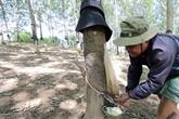 Près de 70% du volume de caoutchouc du Vietnam exporté en Chine depuis janvier
