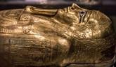 Le sarcophage volé de Nedjemankh de retour en Égypte